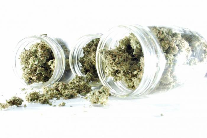 marijuana1_160317_istock_000057419958_medium.jpg
