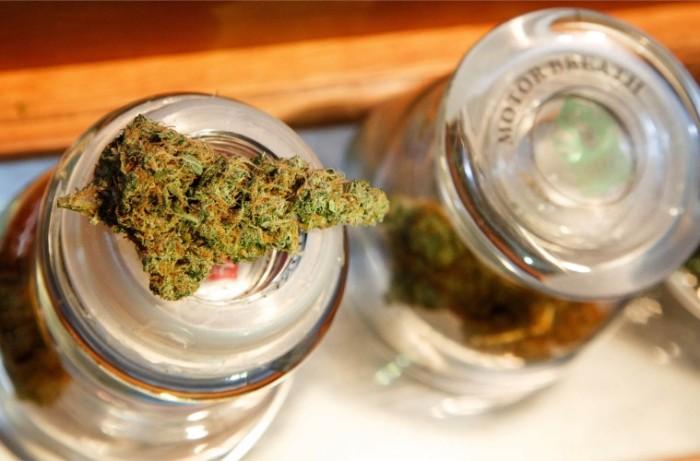 marijuana-generic-759x500.jpg
